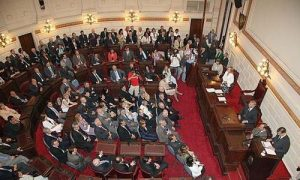 Primera Sesión Ordinaria en Diputados