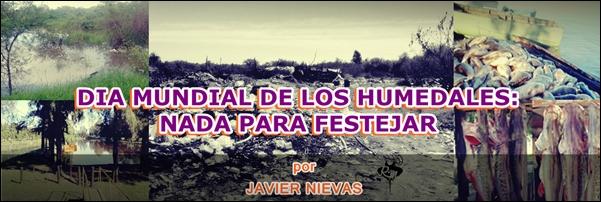 DIA MUNDIAL DE LOS HUMEDALES: NADA PARA FESTEJAR