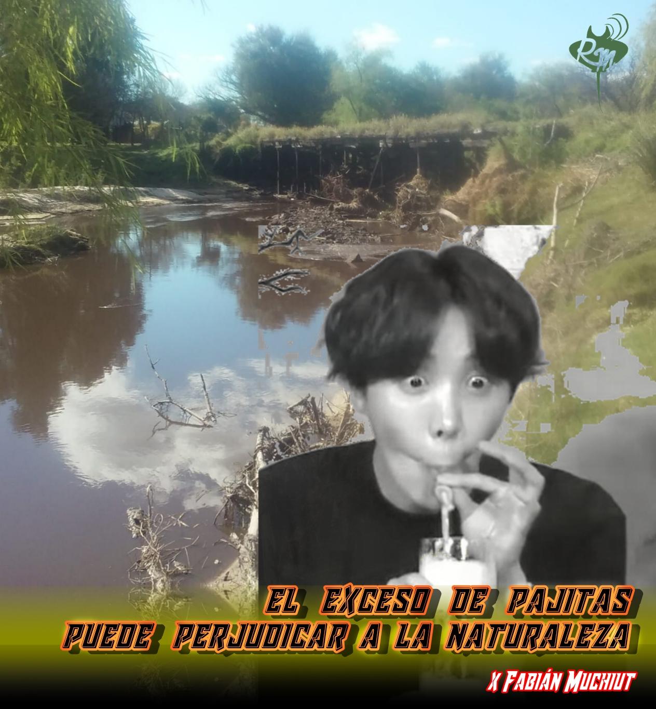 EL EXCESO DE PAJITAS PUEDE PERJUDICAR A LA NATURALEZA